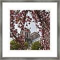 Notre Dame 1 Framed Print