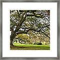 Oak Alley Reverie Framed Print