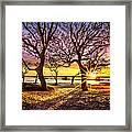 Oak Trees At Sunrise Framed Print