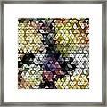 Ocotillo Abstraction Framed Print