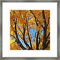 October Sky 1 Framed Print