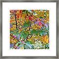 October Watercolors_4 Framed Print by Halyna  Yarova