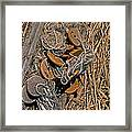 Of Nets And Things Framed Print