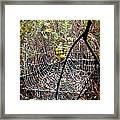 Oh What A Web We Weave Framed Print