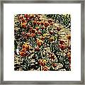 Oil Painting - Red And Yellow Tulips Inside The Tulip Garden In Srinagar Framed Print
