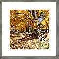 Old Farmroad With Autumn Colors Framed Print by George Oze
