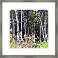 Old Wood Stand Painterly Style Framed Print