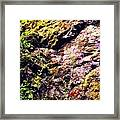On The Side Of The Rock Framed Print