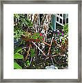 Once A Nice Ride Framed Print