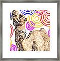 One Funky Camel Framed Print