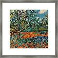 Orange And Blue Flower Field Framed Print