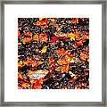 Orange And Brown Framed Print