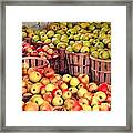 Orchard Time Framed Print