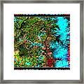 Oregon Cascades Nasa Satellite Framed Print