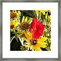 Outcast Framed Print