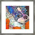 Ozzy The Wonder Dog Framed Print by Robin Mead