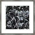 Paint #55 Framed Print