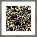 Paint Number Thirteen Framed Print