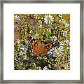 Painted By Fall Framed Print