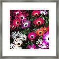 Painted Flowers Framed Print