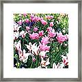 Painted Spring Exhibit Framed Print