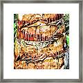 Palm Tree 14 Framed Print