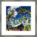 Palm Trees And Colorful Building Framed Print