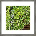 Palpitation - Featured 3 Framed Print