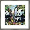Panda Valley Framed Print