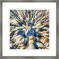 Color Zoom Framed Print