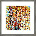 Panoply Framed Print