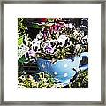 Cup Of Pansies Framed Print