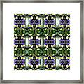 Pansy Floral Pattern Framed Print