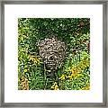 Paper Hornet Nest Framed Print