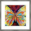 Papillon Colore Framed Print