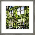 Paris Moss Framed Print