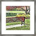 Park Bench By The Pond Framed Print