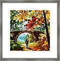 Park Bridge Framed Print