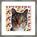 Party Animal - Smaller Cat With Confetti Framed Print