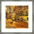 Passage Down The River Framed Print