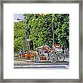 Passenger Cars Only - Central Park Framed Print