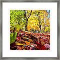 Path Of Leaves Framed Print
