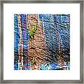 Pattern On Wet Canyon Wall From River Walk In Zion Canyon In Zion National Park-utah  Framed Print