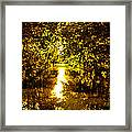 Peaceful Day In Summer Framed Print