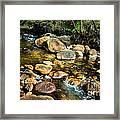 Peaceful Mountain Stream Framed Print