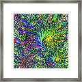 Peacock Feather Abstract Framed Print