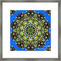 Peacock Feathers Kaleidoscope 9 Framed Print