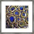 Pebbles Marbled Blue Framed Print