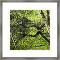 Perfect Moments Framed Print