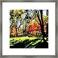 Perfect Picnic Spot Framed Print